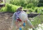 Котка върху гърба на жена, която копае