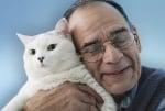 Котките понижават холестерола
