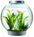 Кръгъл аквариум