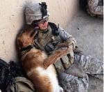 Куче целува войник