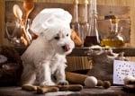 Майстор-готвач Кучо