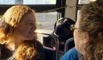 Куче и пътници в автобуса