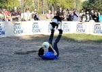 Куче играе фризби