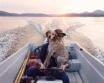 Куче на лодка