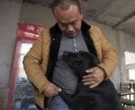 Куче прегръща Ван