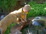 Куче с детенце