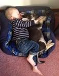 Куче с момченце