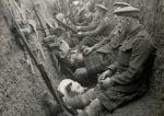 Куче с войници в ров