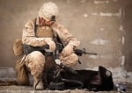 Куче си играе с войник