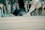 Куче спи при войниците