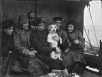 Куче в армията през Втората Световна война