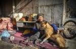 Куче в Китай