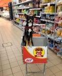 Куче в супермаркет