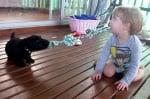 Кученце и детенце