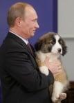 Кученцето от България за Путин
