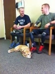 Кучето Фейт помага на войници