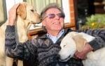 Кучето водач на незрящ човек също ослепява, той взема второ куче, което да води двама им