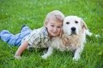 Кучето заздравява сърцето