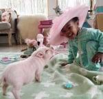 Либи с розова шапка
