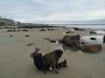 Лоран и Жизел на плажа