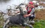 Магаре се усмихва до уши, след като е спасено от наводненията в Ирландия