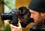 Бъдещ фотограф