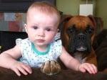Малки кученца и малки деца - радост и чистосърдечно приятелство
