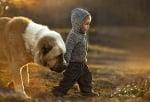 Малко дете с голямо куче кангал, минуси на кучетата