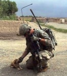 Малко кученце и войник