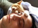 Момче с котка