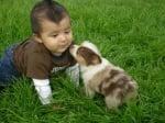 Момченце с кафяво кученце