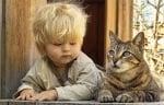 Момченце с котка
