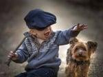 Момченце с йоркширски териер