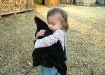 Момиченце с черна кокошка