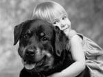 Момиченце с черно куче