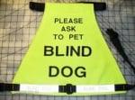 Надпис за сляпо куче
