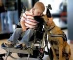 Неизлечимо момче със спасено куче