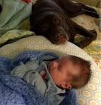Обгрижване на бебето
