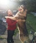 Огромно куче