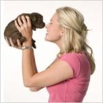 Онлайн търсене на куче