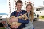 Осиновяване на кучета от състезателите в Сочи