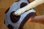 Почистване лапите на кучето