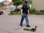 Полицай пази патенца