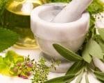 Приготвяне на лекарствени форми от растителни дроги
