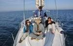 Проект за наблюдение на китоподобни