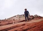 Пътешествие с куче