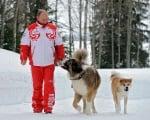 Путин на разходка с кучета