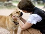 Разговор с кучето