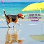 Разходка по плажа