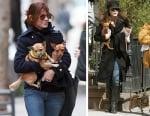 """""""Доброто сърце на Америка"""", Сандра Бълок, осиновява 3 кученца със специални нужди"""